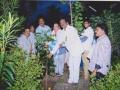 Planting saplings