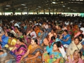 Disciples listening to Sadguru speech